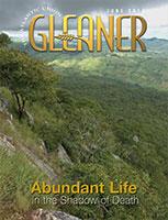 gleaner_cover_0614_153x200